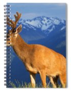 Deer With Antlers, Mountain Range In Spiral Notebook