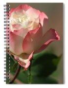 Delany Sister Rose Spiral Notebook