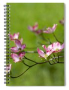 Delicate Pink Dogwood Blossoms Spiral Notebook