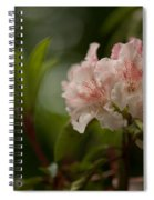 Delicately Peach Spiral Notebook