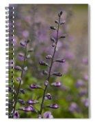 Delphinium Haze Spiral Notebook