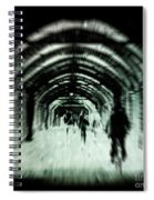 Delusions Spiral Notebook
