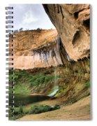 Demon Canyon Spiral Notebook