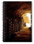 Den Of Dionysus Spiral Notebook