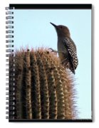 Desert Bird Atop Saguaro Spiral Notebook