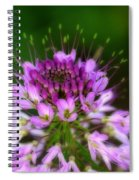 Desert Bloosom Spiral Notebook