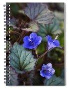 Desert Bluebells  Spiral Notebook