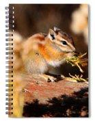 Desert Chipmunk Eating His Breakfast Spiral Notebook