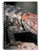 Desert Lizard Spiral Notebook