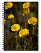 Desert Marigold Spiral Notebook
