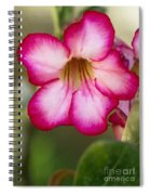 Desert Rose Spiral Notebook