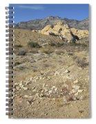 Desert Washout Spiral Notebook