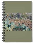 Desert Wolf Spiral Notebook