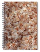 Desert's Collection Of Dried Flowers 2 Spiral Notebook