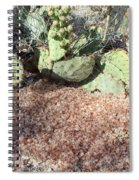 Desert's Collection Of Dried Flowers1 Spiral Notebook