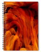 Desiderio Spiral Notebook