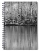 Desolate Splendor Bw Spiral Notebook