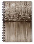 Desolate Splendor S Spiral Notebook