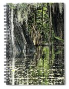 Details Of A Florida River Spiral Notebook