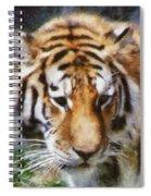 Detroit Tiger Spiral Notebook