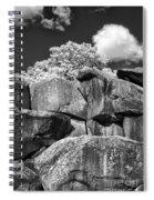 Devil's Den - 39 Spiral Notebook
