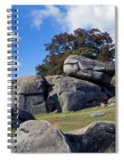 Devil's Den Formation 25 Spiral Notebook