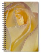 Dew Bejeweled Peace Rose Spiral Notebook