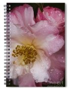 Dew Drops On Pink Spiral Notebook