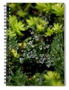 Dew Spheres Spiral Notebook