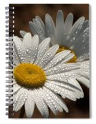 Dew Tell Oxeye Daisy Wildflowers Spiral Notebook