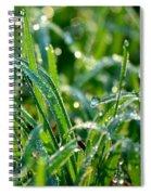 Dewdrops Spiral Notebook