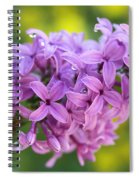Dewdrops On Lilacs Spiral Notebook