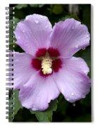 Dewey Hibiscus Spiral Notebook