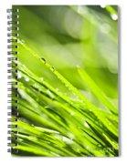 Dewy Green Grass  Spiral Notebook