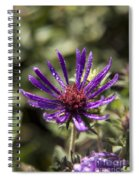 Dewy Purple Fleabane Spiral Notebook
