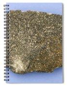 Diabase Spiral Notebook