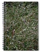 Diamond Drops Spiral Notebook