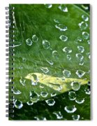 Diamond Encased Spiral Notebook