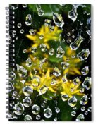 Diamond Studded Web Spiral Notebook