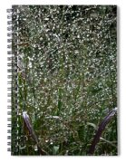 Diamonds By Nature Spiral Notebook