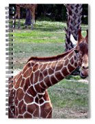 Did You Say Smile Spiral Notebook
