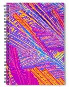 Didanosine Crystal Spiral Notebook