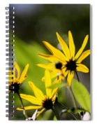 Different Angle Spiral Notebook