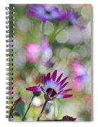 Different Spiral Notebook