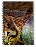 Digital Fall Spiral Notebook