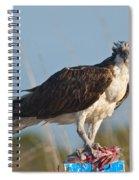 Dining Osprey Spiral Notebook