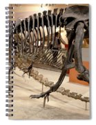 Dinosaurs At The Smithsonian Spiral Notebook