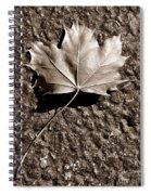 Dipped In Bronze Spiral Notebook