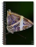 Dirce Beauty Spiral Notebook
