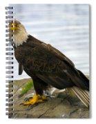 Dirty Bird Spiral Notebook